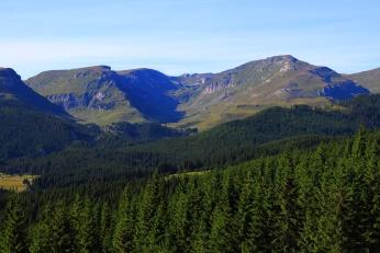 Photographie de montagne et de forêt © DR